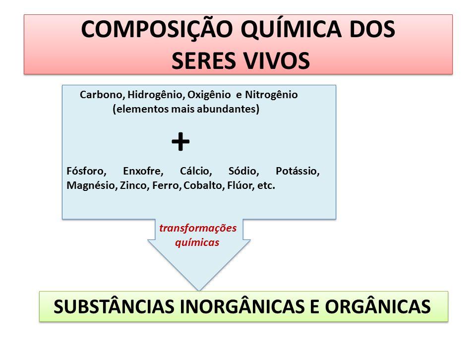 COMPOSIÇÃO QUÍMICA DOS SERES VIVOS Carbono, Hidrogênio, Oxigênio e Nitrogênio (elementos mais abundantes) + Fósforo, Enxofre, Cálcio, Sódio, Potássio,
