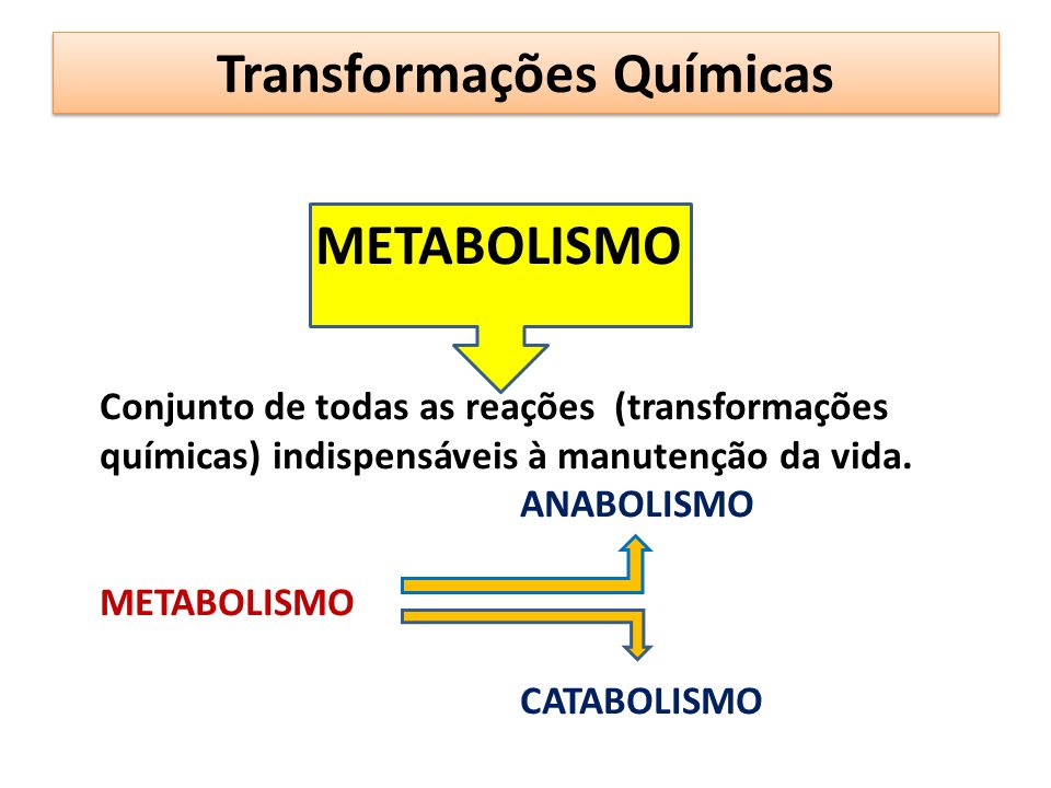 METABOLISMO Conjunto de todas as reações (transformações químicas) indispensáveis à manutenção da vida. ANABOLISMO METABOLISMO CATABOLISMO Transformaç