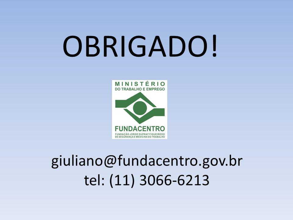 giuliano@fundacentro.gov.br tel: (11) 3066-6213 OBRIGADO!