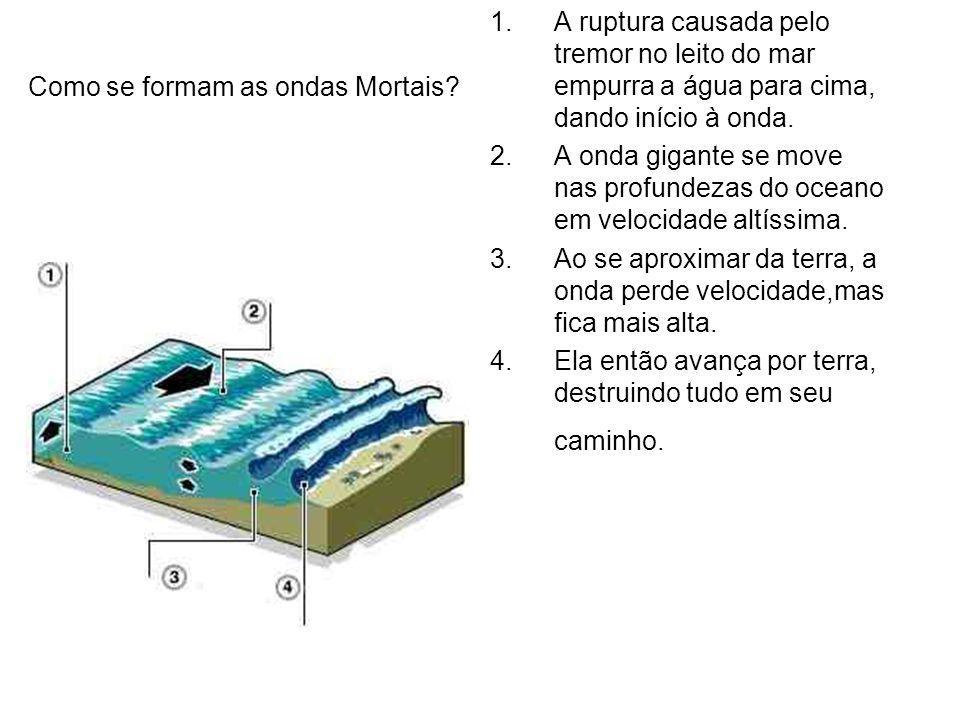 1.A ruptura causada pelo tremor no leito do mar empurra a água para cima, dando início à onda. 2.A onda gigante se move nas profundezas do oceano em v
