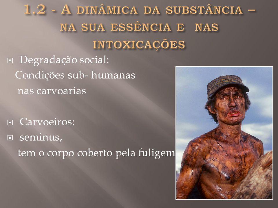  Degradação social: Condições sub- humanas nas carvoarias  Carvoeiros:  seminus, tem o corpo coberto pela fuligem