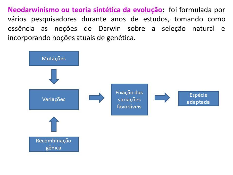 Neodarwinismo ou teoria sintética da evolução: foi formulada por vários pesquisadores durante anos de estudos, tomando como essência as noções de Darw