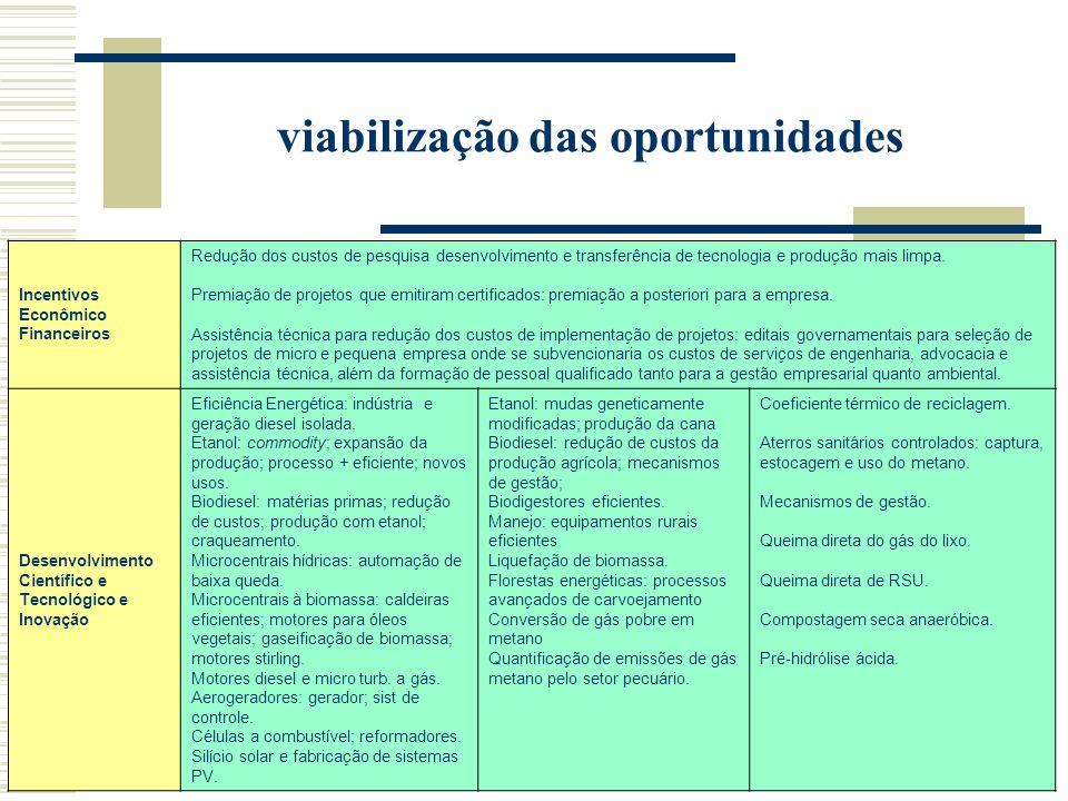 viabilização das oportunidades Incentivos Econômico Financeiros Redução dos custos de pesquisa desenvolvimento e transferência de tecnologia e produção mais limpa.