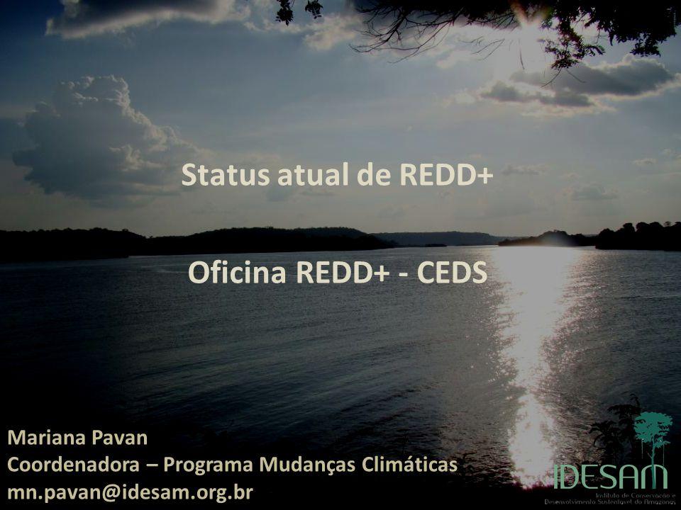 Reunião GCF Manaus, 08 de Julho de 2011 Mariana Nogueira Pavan mn.pavan@idesam.org.br Status atual de REDD+ Oficina REDD+ - CEDS Mariana Pavan Coorden