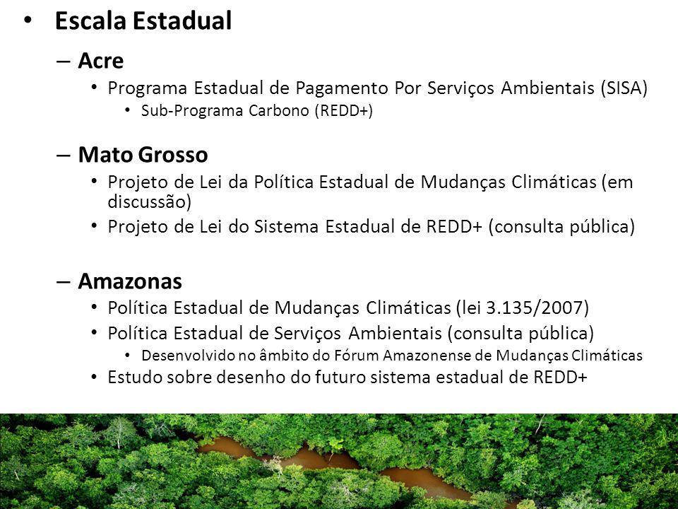 Escala Estadual – Acre Programa Estadual de Pagamento Por Serviços Ambientais (SISA) Sub-Programa Carbono (REDD+) – Mato Grosso Projeto de Lei da Polí
