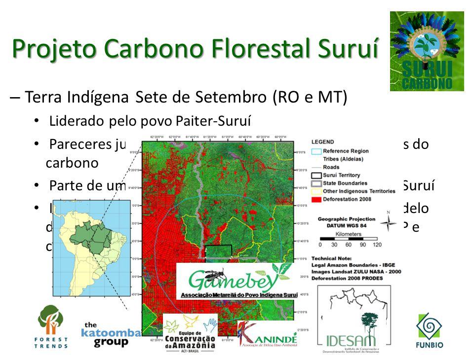 – Terra Indígena Sete de Setembro (RO e MT) Liderado pelo povo Paiter-Suruí Pareceres jurídicos apontam os indígenas como titulares do carbono Parte d