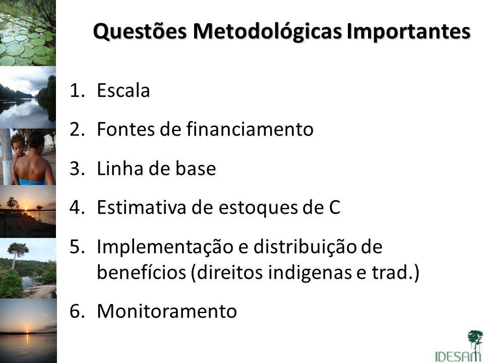 Questões Metodológicas Importantes 1.Escala 2.Fontes de financiamento 3.Linha de base 4.Estimativa de estoques de C 5.Implementação e distribuição de