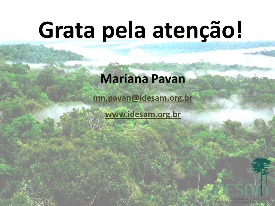 Mariana Pavan mn.pavan@idesam.org.br www.idesam.org.br Grata pela atenção!