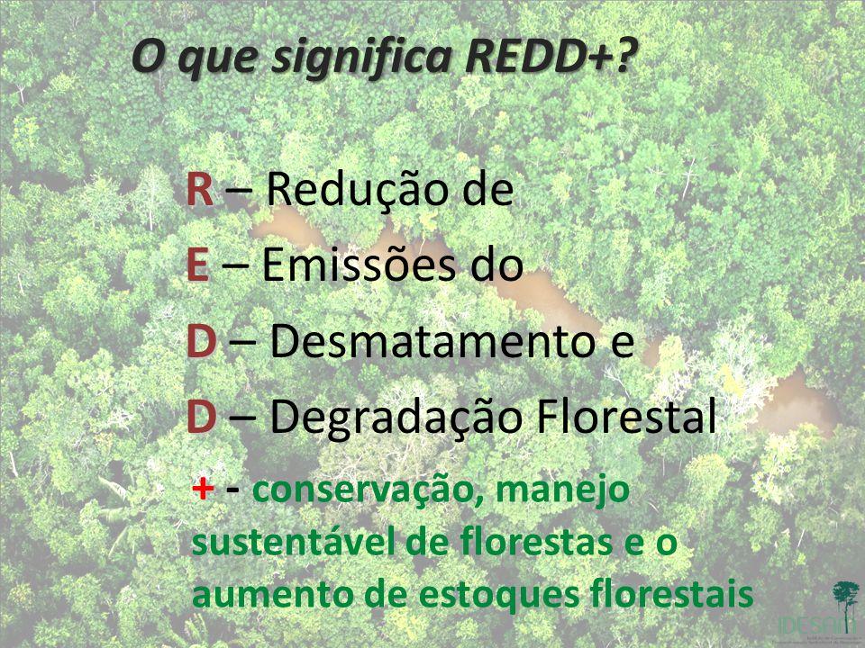 O que significa REDD+? R R – Redução de E E – Emissões do D D – Desmatamento e D D – Degradação Florestal + - + - conservação, manejo sustentável de f