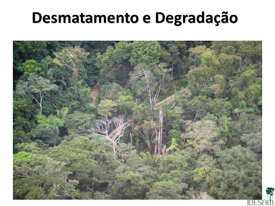 Desmatamento e Degradação Área florestalconvertida em área não florestal Degradação: área florestal que permanece como área florestal por um determina