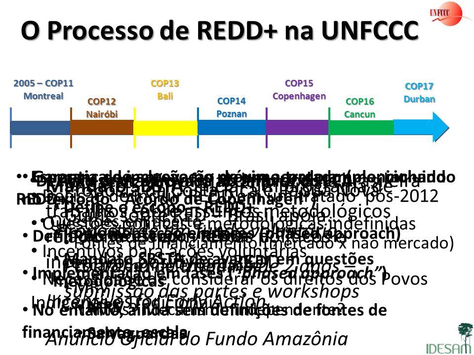O Processo de REDD+ na UNFCCC 2005 – COP11 Montreal Proposta da Costa Rica e Papua Nova Guine sobre RED – Brasil apóia… Programa de trabalho de 2 anos
