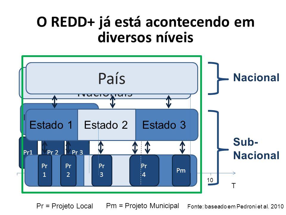 Políticas/Programas Nacionais Pr1Pr 2Pr 3 Iniciativas Estaduais Pr = Projeto Local Pm = Projeto Municipal T 12345678910 País Pr 1 Pr 2 Pr 3 Pr 4 Pm Es