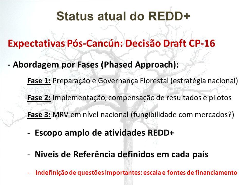  Preparação REDD+ (Readiness): FCPF : U$ 200 milhões + U$ 145 milhões (carbon fund) UN-REDD: U$ 94 milhões Global REDD+ Partnership: U$ 4 bilhões (2010 – 2012)  Mercado voluntário de carbono: GCF/Califórnia Bilaterais no setor privado: BioCF, KfW Fund, BNP-Paribas Mercado Brasileiro: Carboneutralização, Natura, etc.