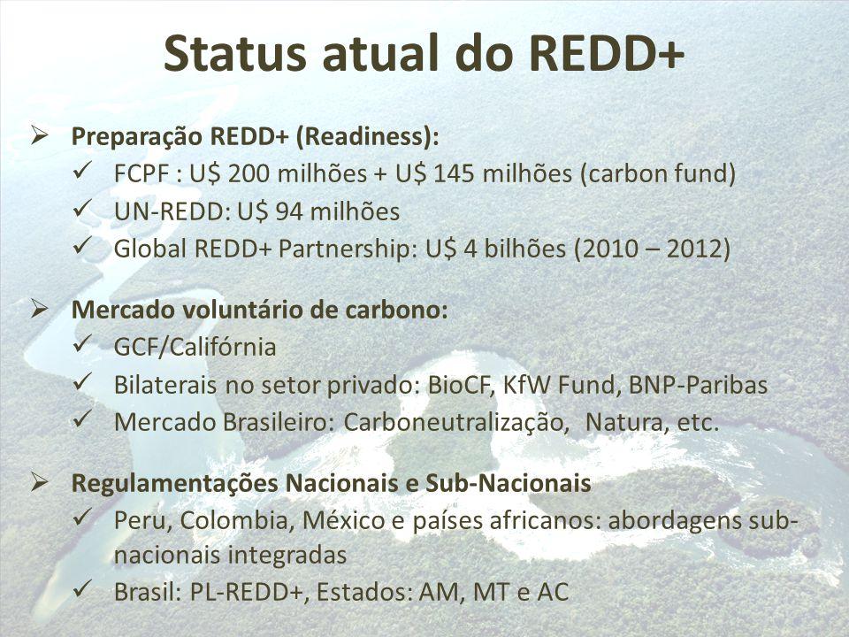  Preparação REDD+ (Readiness): FCPF : U$ 200 milhões + U$ 145 milhões (carbon fund) UN-REDD: U$ 94 milhões Global REDD+ Partnership: U$ 4 bilhões (20