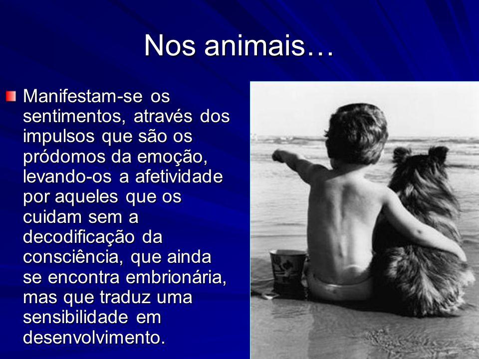 Necessidade de trabalhar as tendências primárias… (...) os instintos dominantes e primitivos, são intransferíveis em todos os indivíduos.