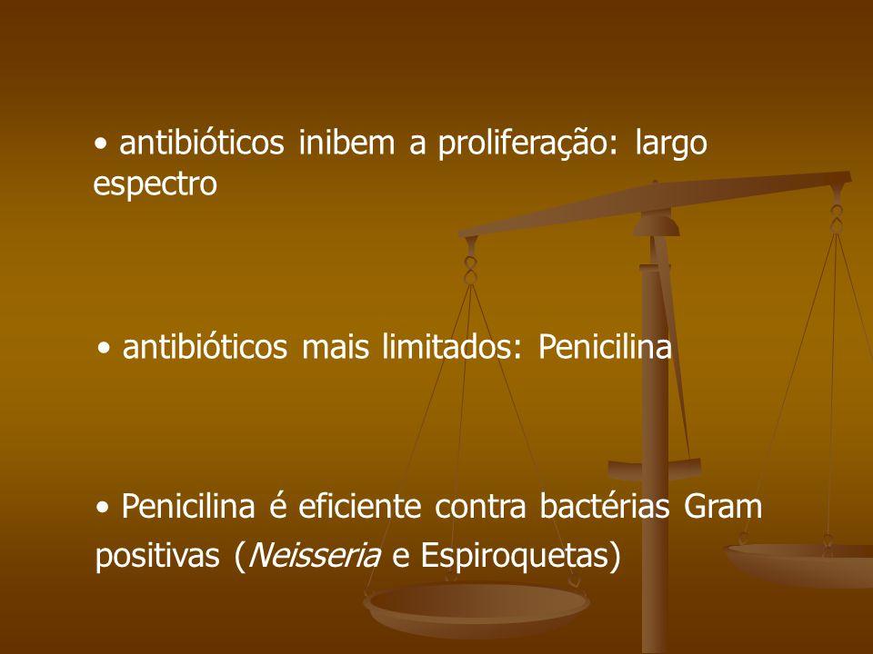 antibióticos inibem a proliferação: largo espectro antibióticos mais limitados: Penicilina Penicilina é eficiente contra bactérias Gram positivas (Neisseria e Espiroquetas)