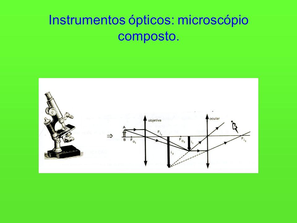 Instrumentos ópticos: microscópio composto.