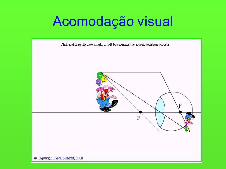 Acomodação visual