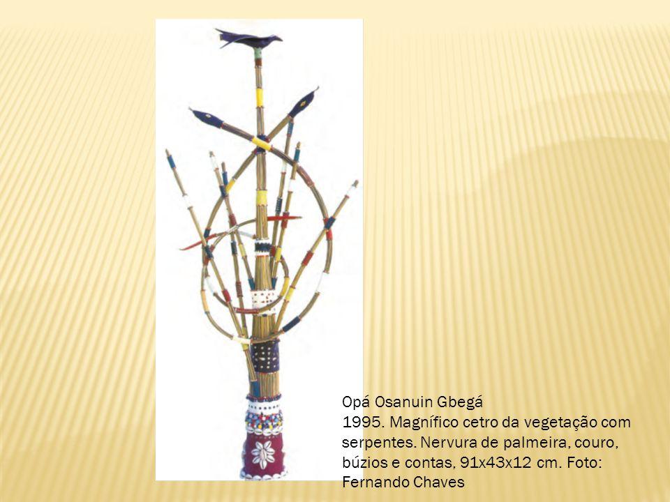 Opá Osanuin Gbegá 1995. Magnífico cetro da vegetação com serpentes. Nervura de palmeira, couro, búzios e contas, 91x43x12 cm. Foto: Fernando Chaves