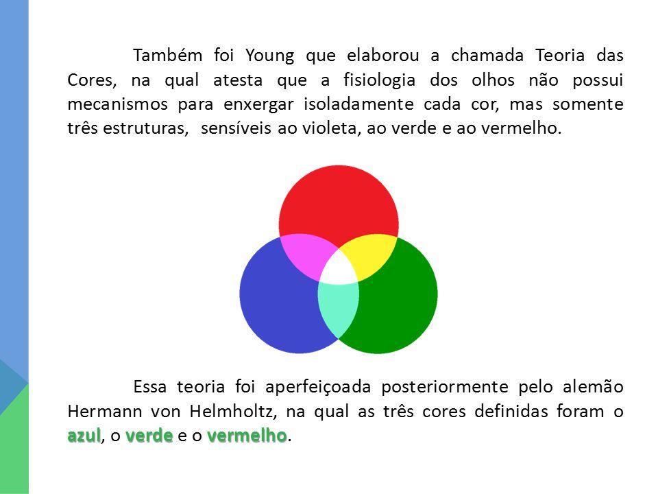 Também foi Young que elaborou a chamada Teoria das Cores, na qual atesta que a fisiologia dos olhos não possui mecanismos para enxergar isoladamente cada cor, mas somente três estruturas, sensíveis ao violeta, ao verde e ao vermelho.