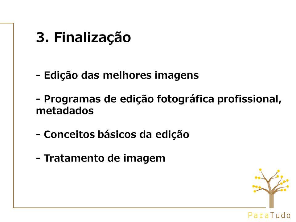 3. Finalização - Edição das melhores imagens - Programas de edição fotográfica profissional, metadados - Conceitos básicos da edição - Tratamento de i