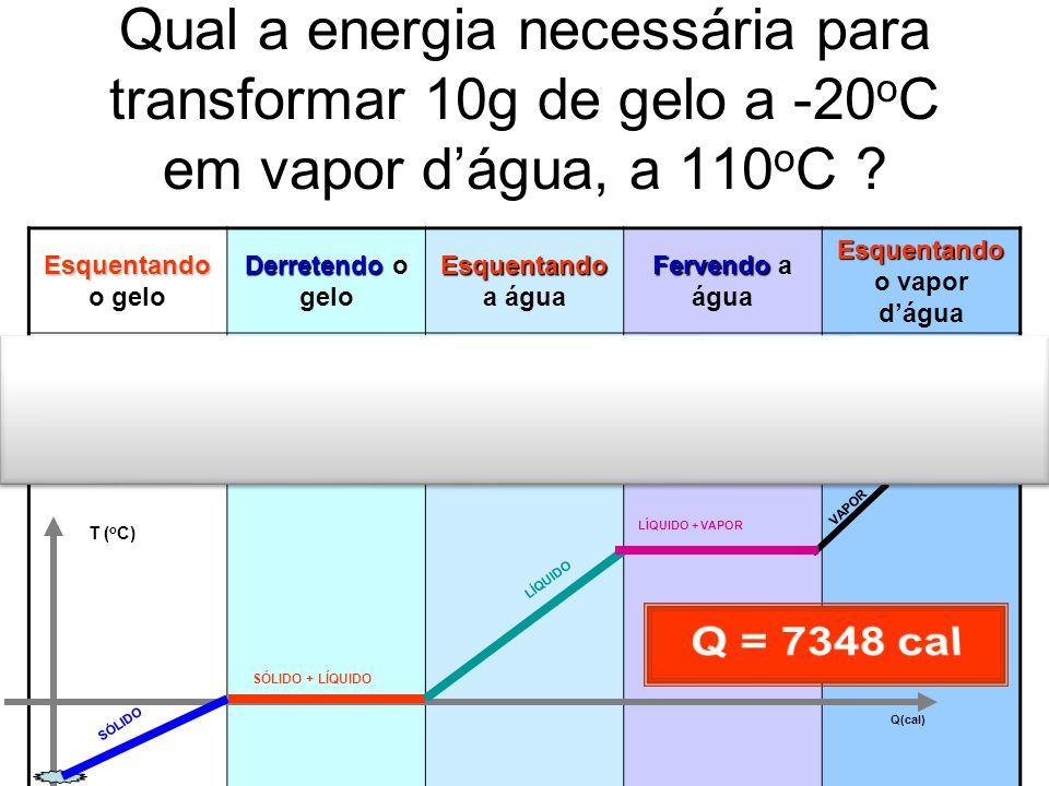 Qual a energia necessária para transformar 10g de gelo a -20 o C em vapor d'água, a 110 o C ? Esquentando Esquentando o gelo Derretendo Derretendo o g