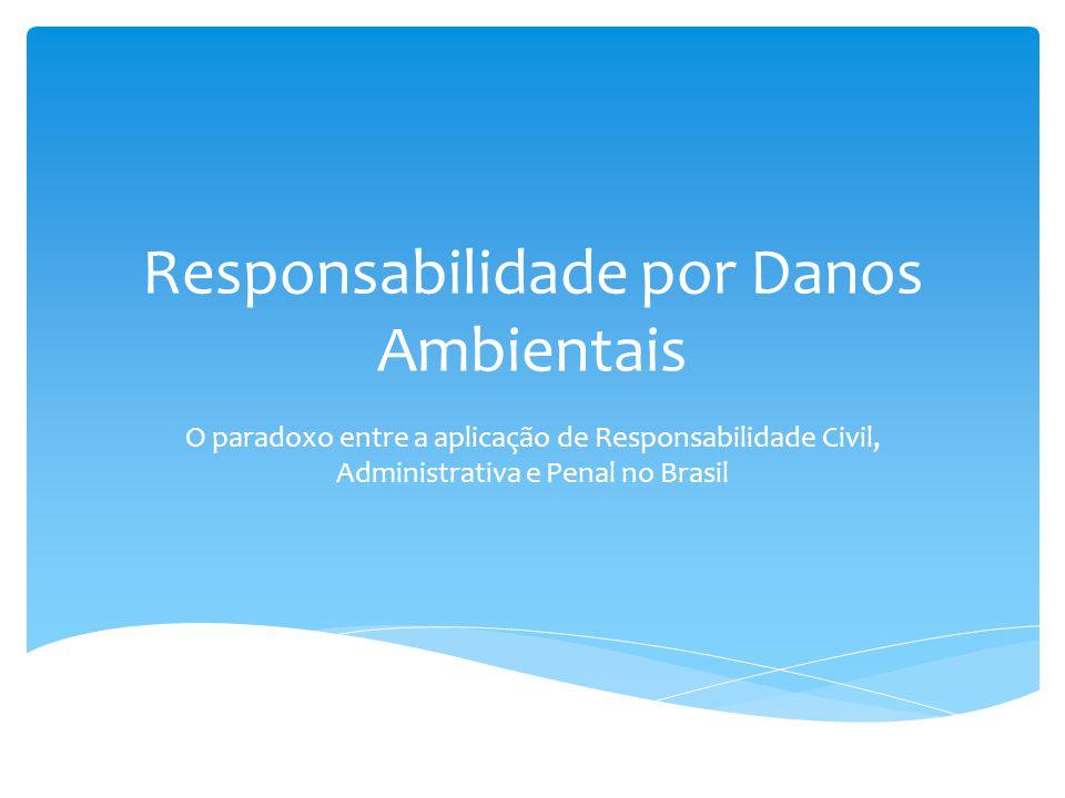 Responsabilidade por Danos Ambientais O paradoxo entre a aplicação de Responsabilidade Civil, Administrativa e Penal no Brasil