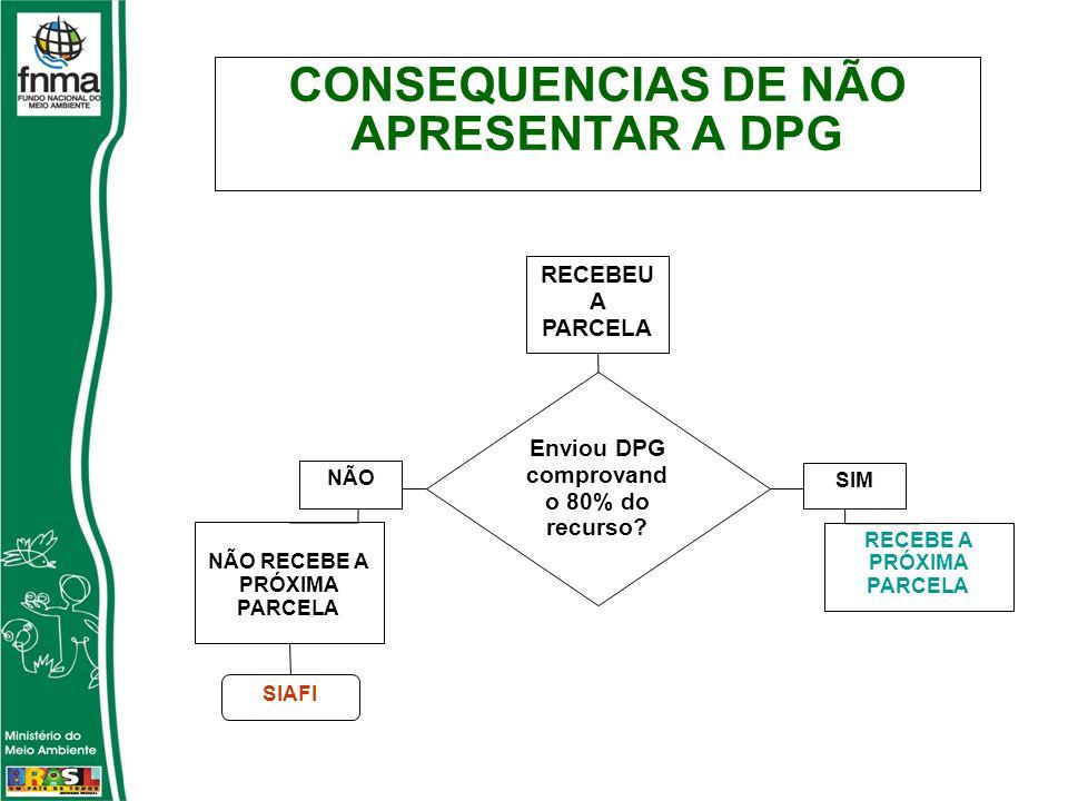 Enviou DPG comprovand o 80% do recurso.