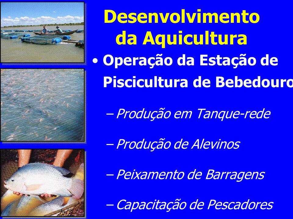 Ações Peixamento de açudes públicos e atendimento a pequenos produtores rurais; Capacitação e inserção no mercado de trabalho de cerca de 70 famílias APLs de Piscicultura de Pernambuco.