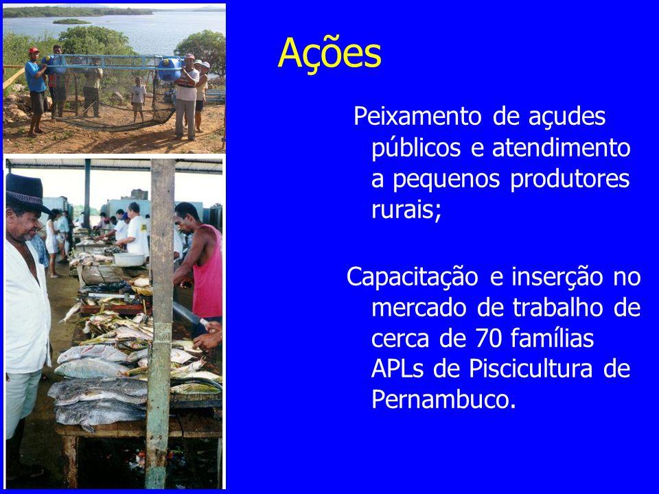 Ações Peixamento de açudes públicos e atendimento a pequenos produtores rurais; Capacitação e inserção no mercado de trabalho de cerca de 70 famílias