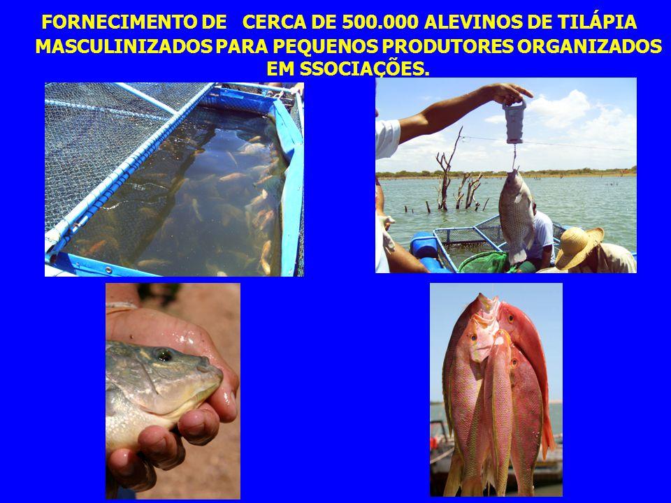 MUITO OBRIGADO JOÃO ANTONIO DE BARROS GRR-UAP-CODEVASF 3ªSR E-MAIL: joao.barros@codevasf.gov.br FONE: (87) 3862 2255