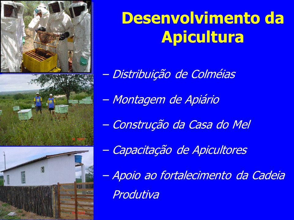 –Distribuição de Colméias –Montagem de Apiário –Construção da Casa do Mel –Capacitação de Apicultores –Apoio ao fortalecimento da Cadeia Produtiva Des