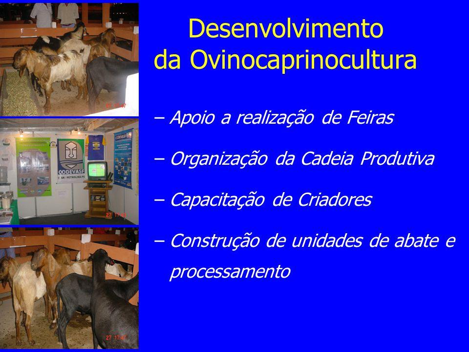 –Apoio a realização de Feiras –Organização da Cadeia Produtiva –Capacitação de Criadores –Construção de unidades de abate e processamento Desenvolvime