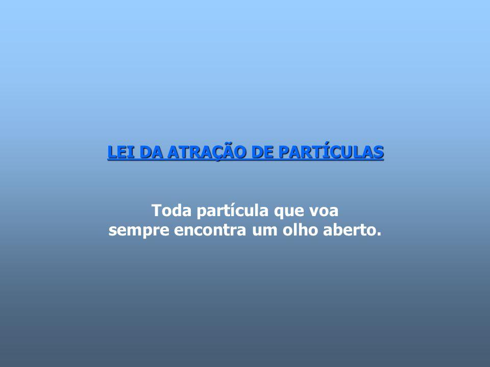 LEI DA ATRAÇÃO DE PARTÍCULAS Toda partícula que voa sempre encontra um olho aberto.