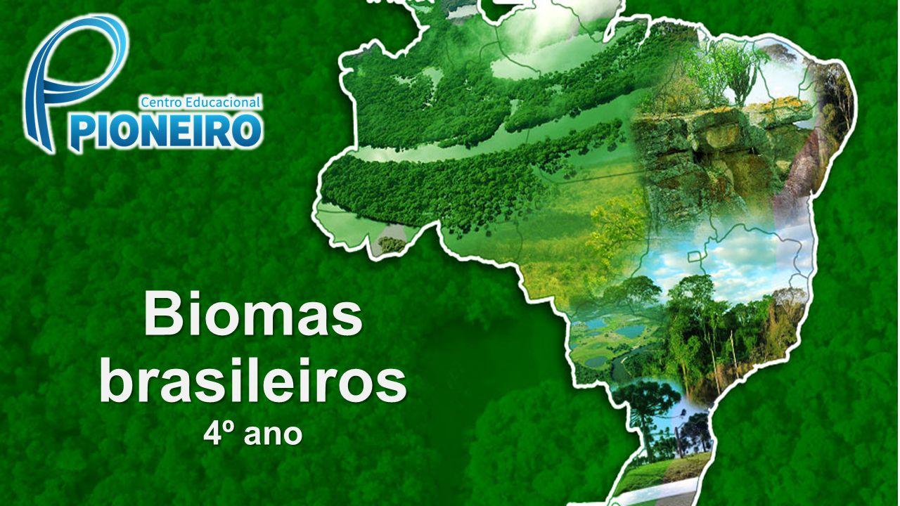 Biomas brasileiros 4º ano