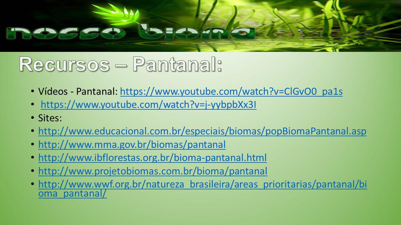 Vídeos - Pantanal: https://www.youtube.com/watch?v=ClGvO0_pa1shttps://www.youtube.com/watch?v=ClGvO0_pa1s https://www.youtube.com/watch?v=j-yybpbXx3I