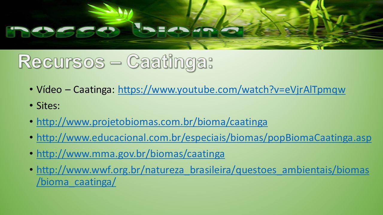 Vídeo – Caatinga: https://www.youtube.com/watch?v=eVjrAlTpmqwhttps://www.youtube.com/watch?v=eVjrAlTpmqw Sites: http://www.projetobiomas.com.br/bioma/caatinga http://www.educacional.com.br/especiais/biomas/popBiomaCaatinga.asp http://www.mma.gov.br/biomas/caatinga http://www.wwf.org.br/natureza_brasileira/questoes_ambientais/biomas /bioma_caatinga/ http://www.wwf.org.br/natureza_brasileira/questoes_ambientais/biomas /bioma_caatinga/