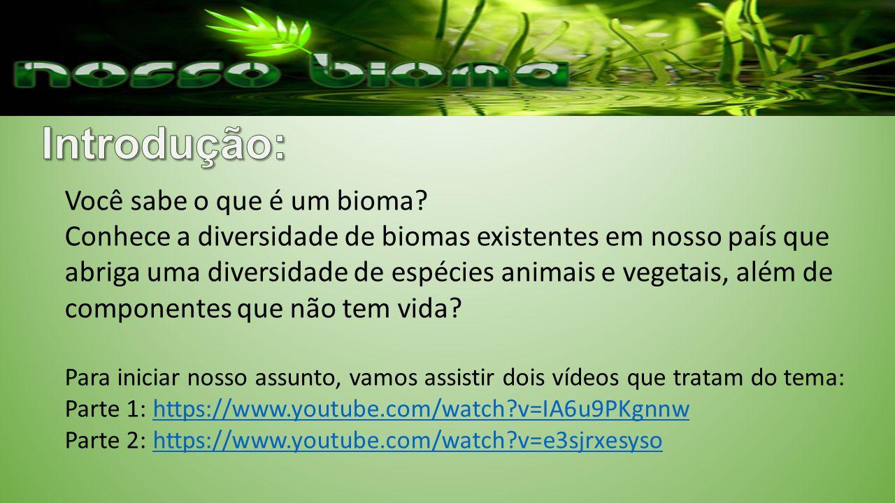 Você sabe o que é um bioma? Conhece a diversidade de biomas existentes em nosso país que abriga uma diversidade de espécies animais e vegetais, além d