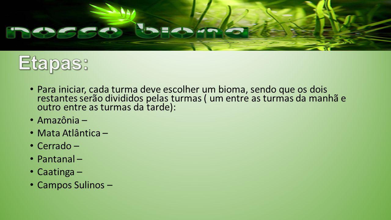 Para iniciar, cada turma deve escolher um bioma, sendo que os dois restantes serão divididos pelas turmas ( um entre as turmas da manhã e outro entre as turmas da tarde): Amazônia – Mata Atlântica – Cerrado – Pantanal – Caatinga – Campos Sulinos –