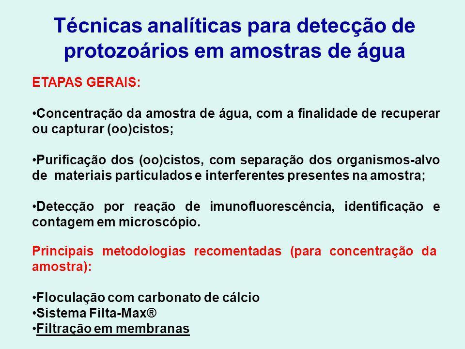 Técnicas analíticas para detecção de protozoários em amostras de água ETAPAS GERAIS: Concentração da amostra de água, com a finalidade de recuperar ou capturar (oo)cistos; Purificação dos (oo)cistos, com separação dos organismos-alvo de materiais particulados e interferentes presentes na amostra; Detecção por reação de imunofluorescência, identificação e contagem em microscópio.