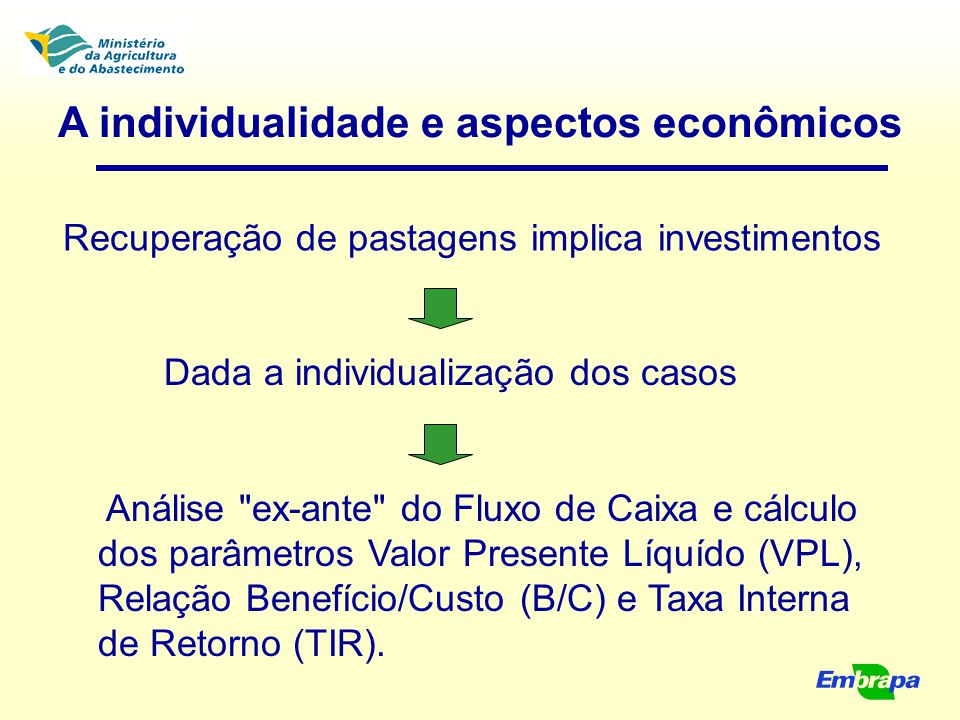 A individualidade e aspectos econômicos Recuperação de pastagens implica investimentos Dada a individualização dos casos Análise