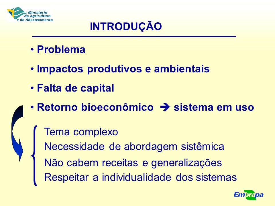 INTRODUÇÃO Problema Impactos produtivos e ambientais Falta de capital Retorno bioeconômico  sistema em uso Tema complexo Necessidade de abordagem sis