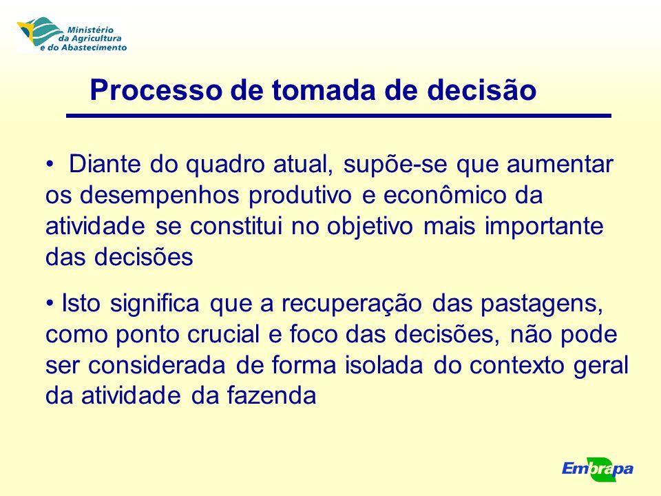 Processo de tomada de decisão Diante do quadro atual, supõe-se que aumentar os desempenhos produtivo e econômico da atividade se constitui no objetivo