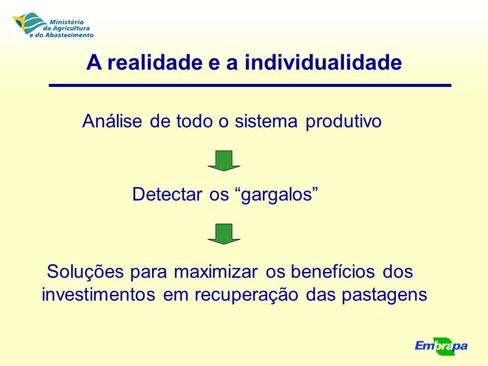 """A realidade e a individualidade Análise de todo o sistema produtivo Detectar os """"gargalos"""" Soluções para maximizar os benefícios dos investimentos em"""