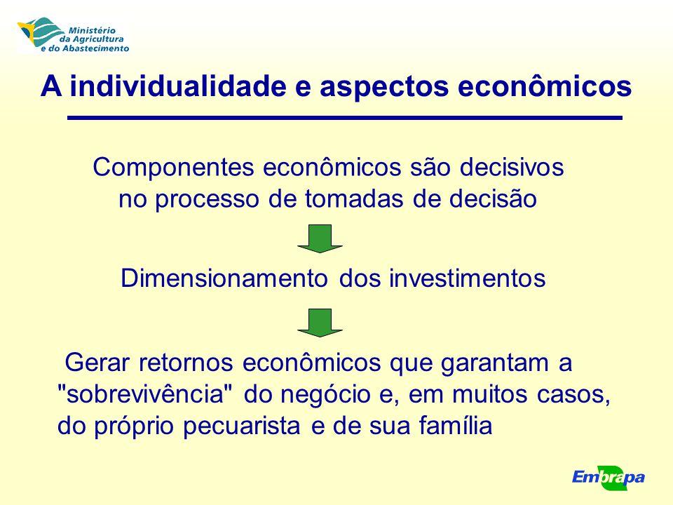 A individualidade e aspectos econômicos Componentes econômicos são decisivos no processo de tomadas de decisão Dimensionamento dos investimentos Gerar