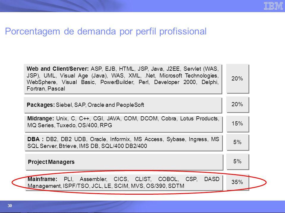 © 2006 IBM Corporation IBM Systems & Technology Group 30 Porcentagem de demanda por perfil profissional Midrange: Unix, C, C++, CGI, JAVA, COM, DCOM,