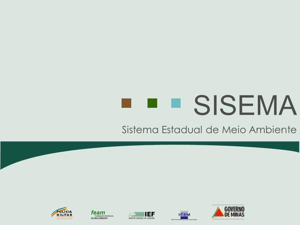 Palestrante: Renata Maria de Araujo Data: 27/11/2008 ASPECTOS LEGAIS DA IMPLEMENTAÇÃO DA COBRANÇA PELO USO DE RECURSOS HÍDRICOS DE DOMÍNIO DO ESTADO DE MINAS GERAIS
