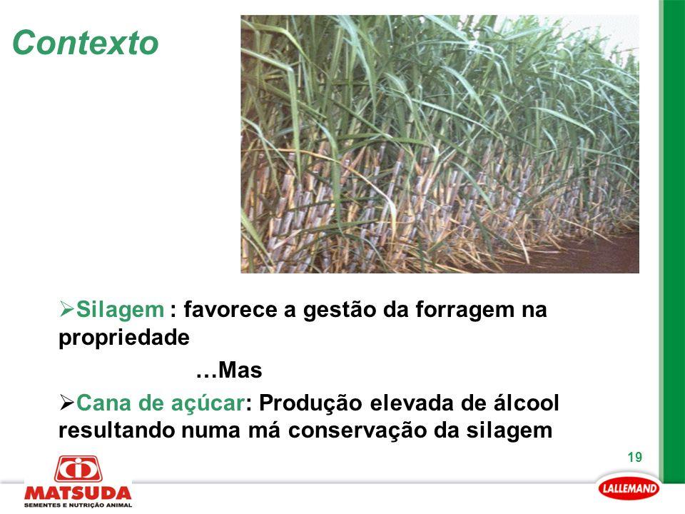 19 Contexto  Silagem : favorece a gestão da forragem na propriedade …Mas  Cana de açúcar: Produção elevada de álcool resultando numa má conservação