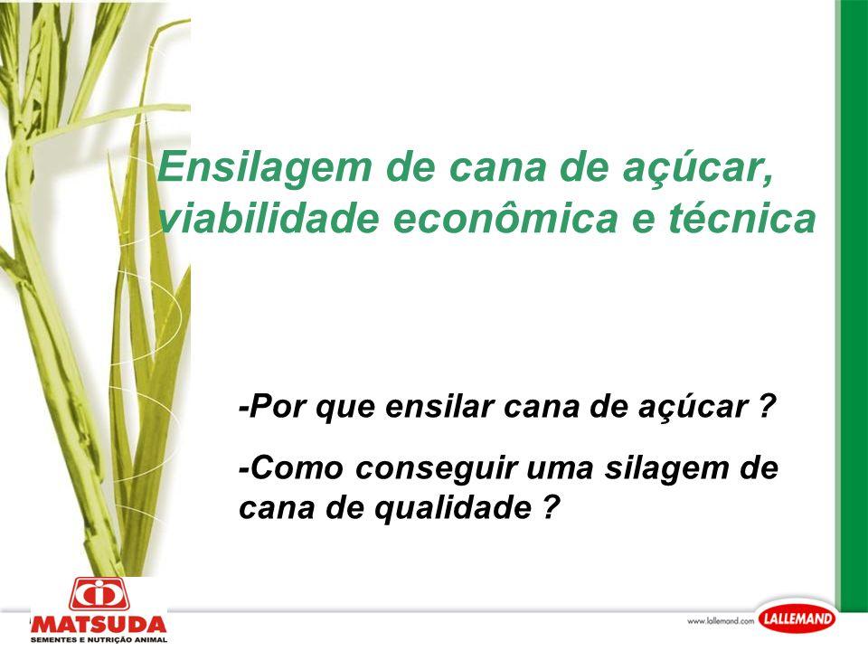 Ensilagem de cana de açúcar, viabilidade econômica e técnica -Por que ensilar cana de açúcar ? -Como conseguir uma silagem de cana de qualidade ?