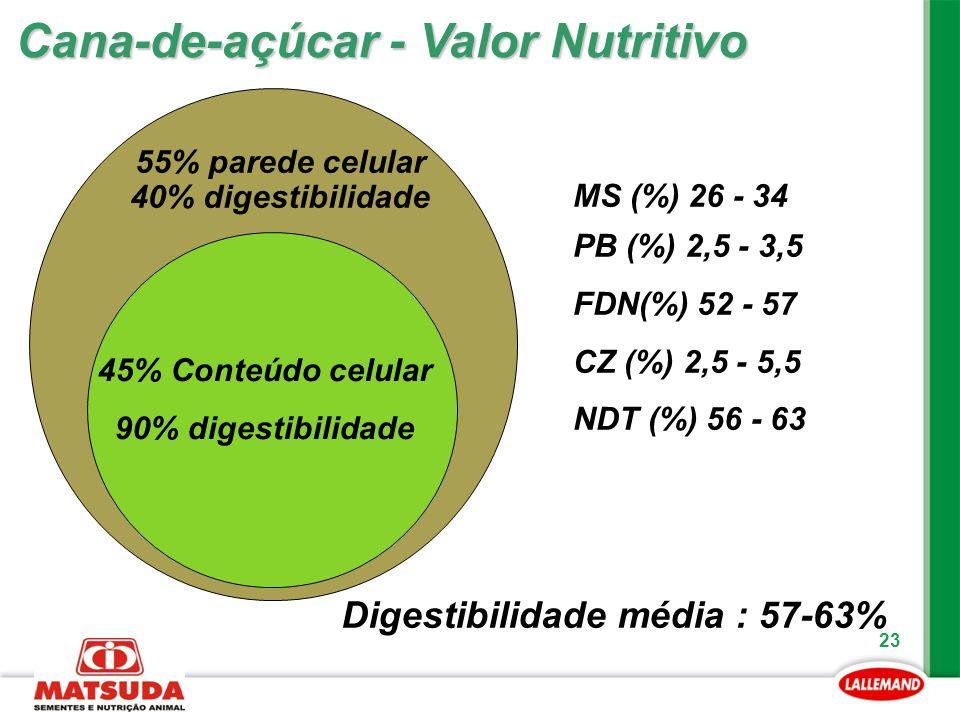 23 Cana-de-açúcar - Valor Nutritivo 45% Conteúdo celular 90% digestibilidade 55% parede celular 40% digestibilidade Digestibilidade média : 57-63% MS